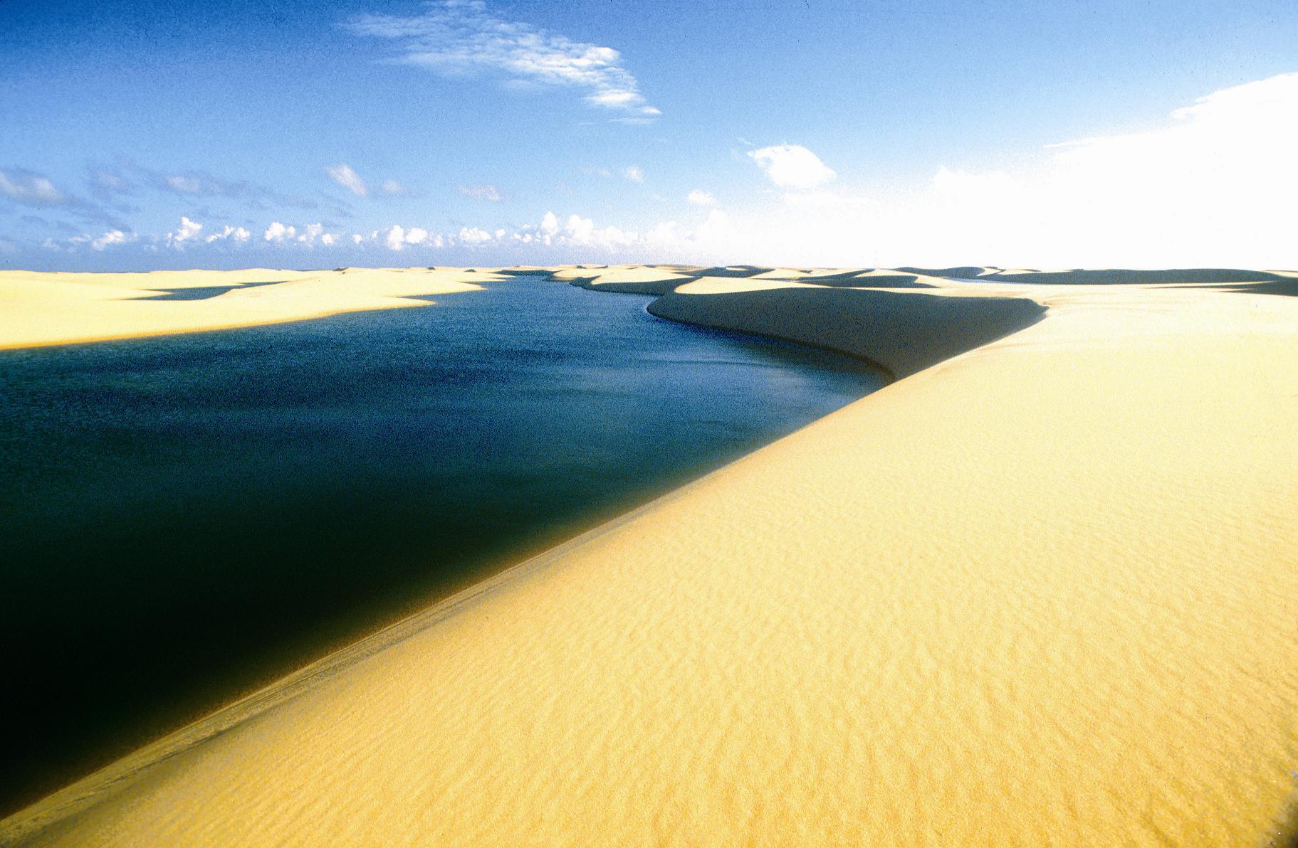Encante-se com a natureza inexplorada do Delta do Parnaíba